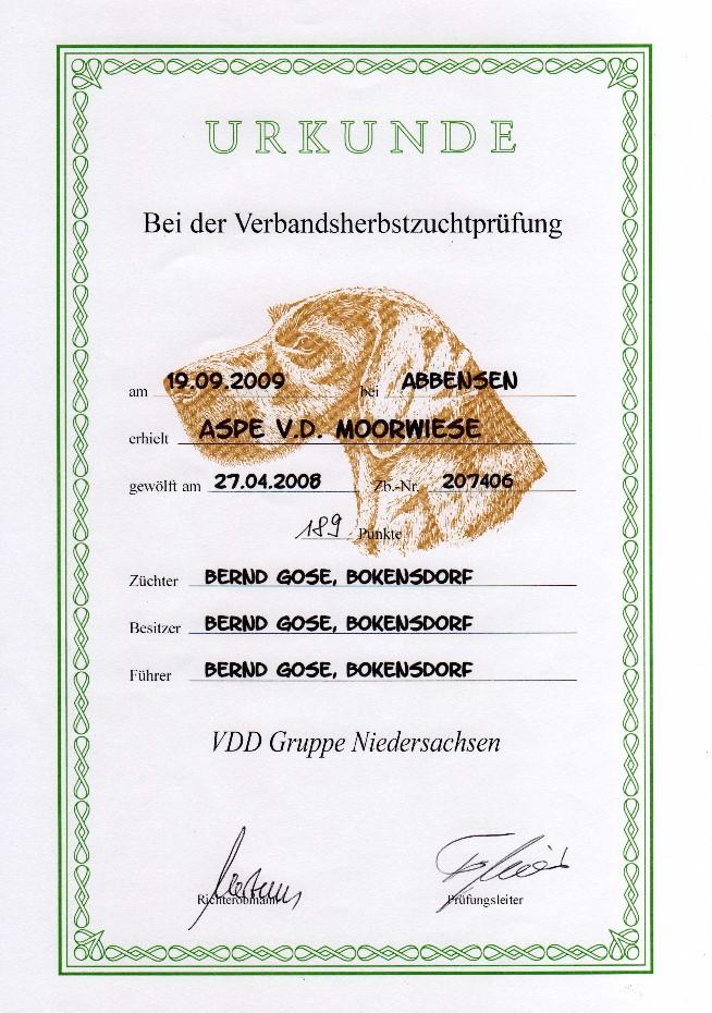 Urkunde HZP Aspe von der Moorwiese