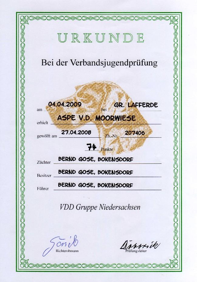 Urkunde VJP Aspe von der Moorwiese
