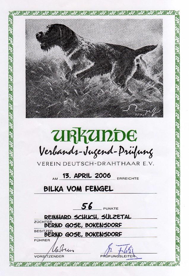 Urkunde VJP Bilka vom Fengel